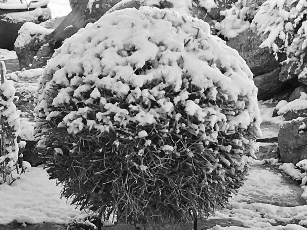Sphere in Snow